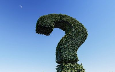 Covid : Quelle est la vraie question, finalement ?